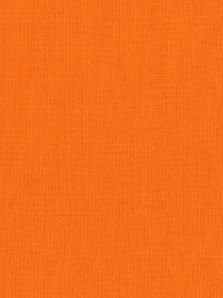 kona Kumquart quilting fabric