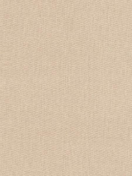 Kona Khaki quilting fabric