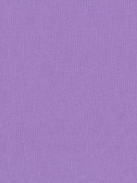 Kona Wisteria quilting fabric